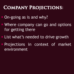 Company Projections