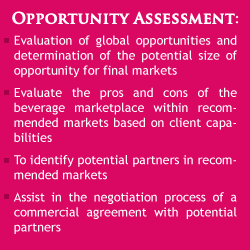 Opportunity Assessment